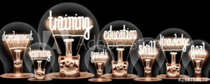 Picture of lightbulbs with education type words appearing in each one